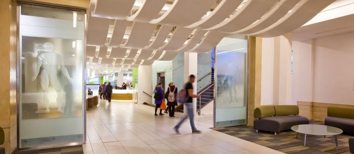 Open Foyer University : Medical school foyer barnes library electrical project